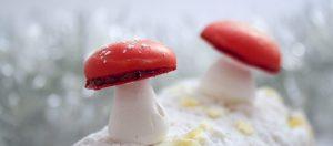 recette-champignon-meringue-deco-buche-08-1500x660
